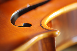 LCS Orchestra Students Selected for Regional Orchestra